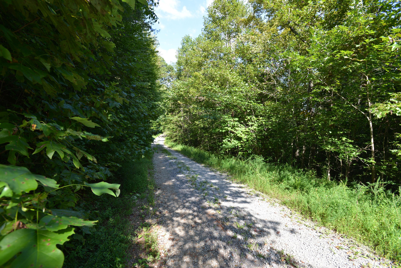 Maiden Lane: