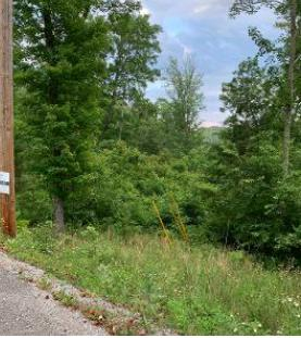 Cove Norris Rd Off Of Rd, Caryville, Tennessee 37714, ,Lots & Acreage,For Sale,Cove Norris Rd Off Of,1081767