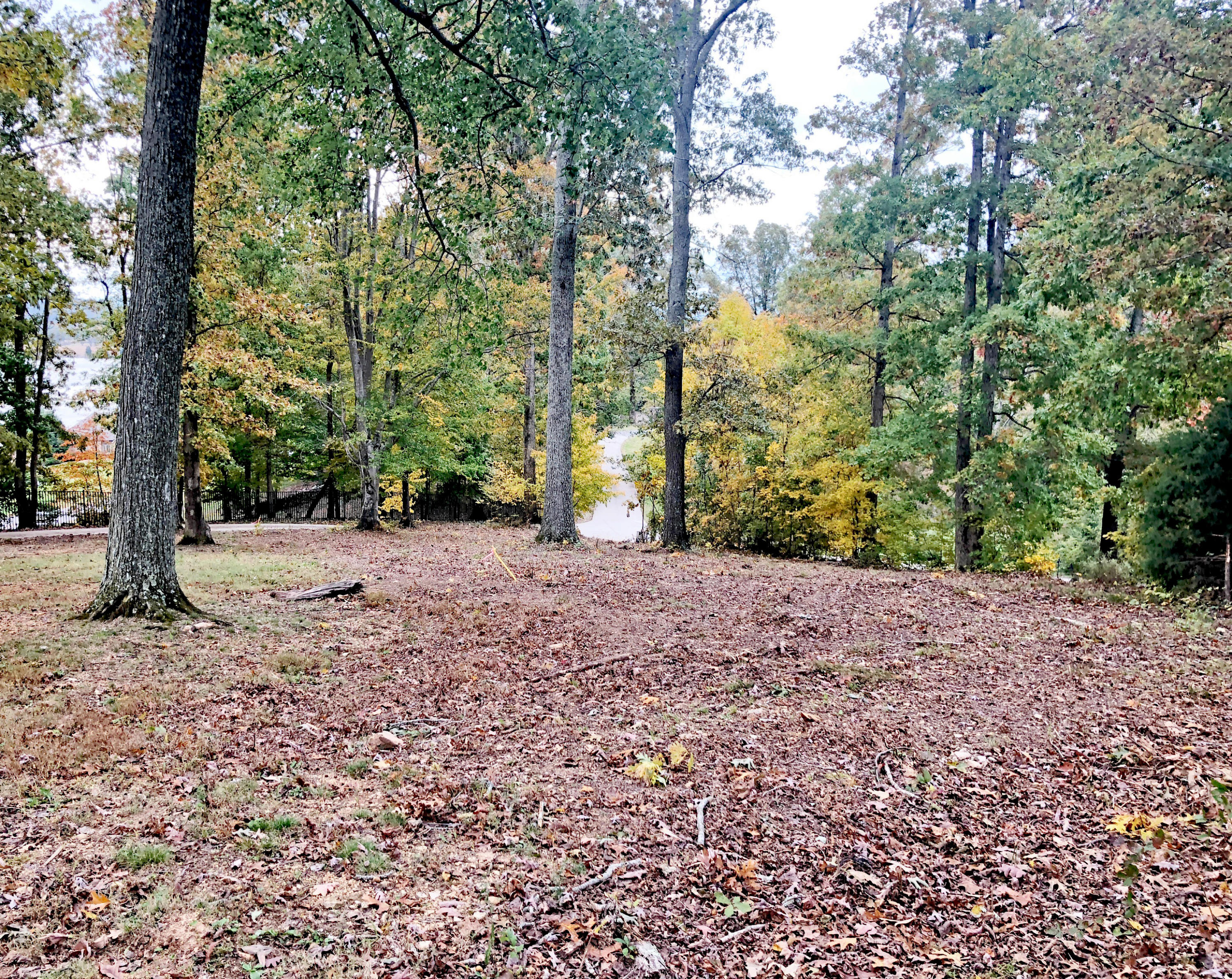 9c1 Watershaw, Friendsville, Tennessee, United States 37737, ,Lots & Acreage,For Sale,Watershaw,1098279
