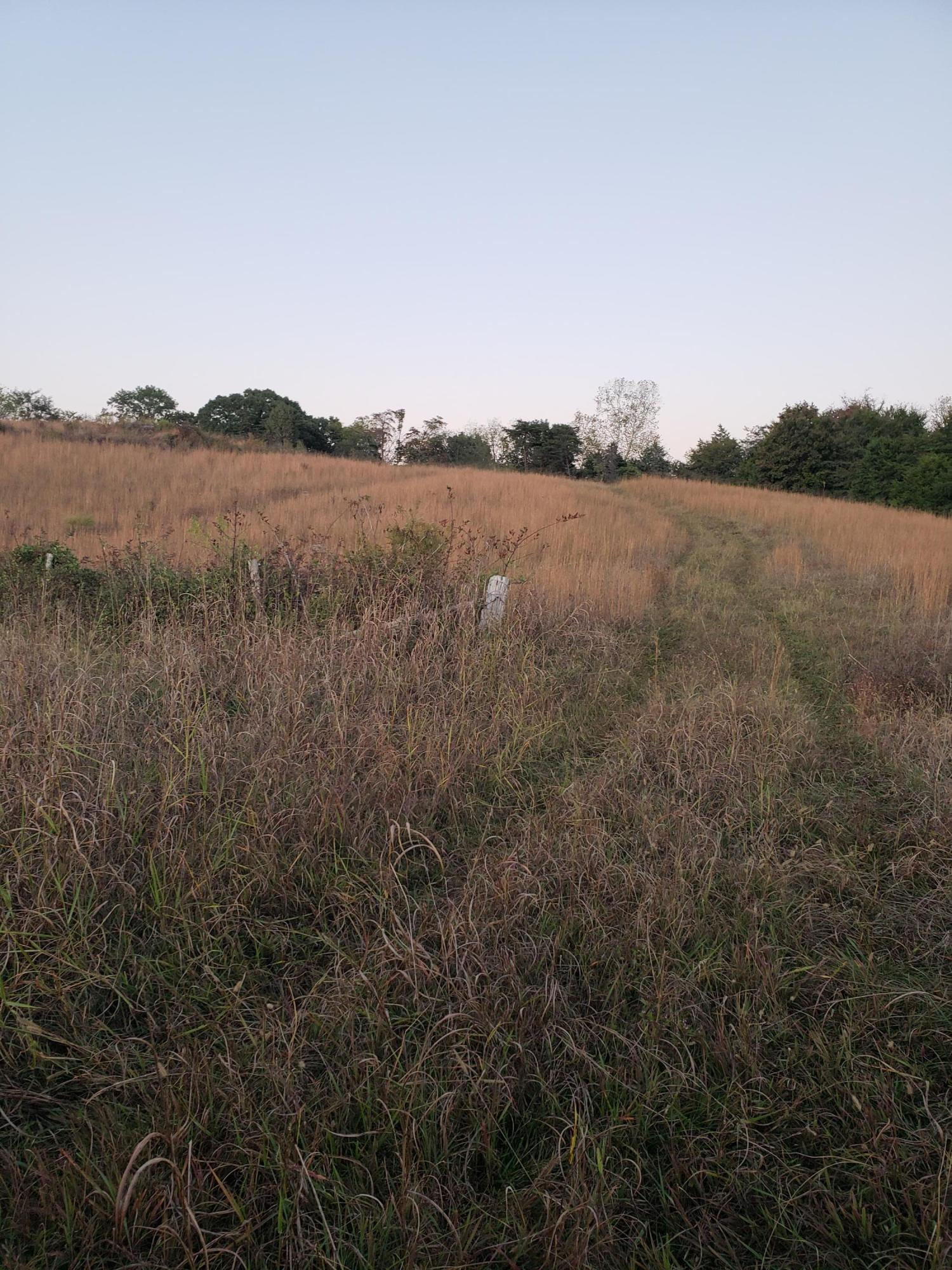 280 County, Niota, Tennessee, United States 37826, ,Lots & Acreage,For Sale,County,1098215