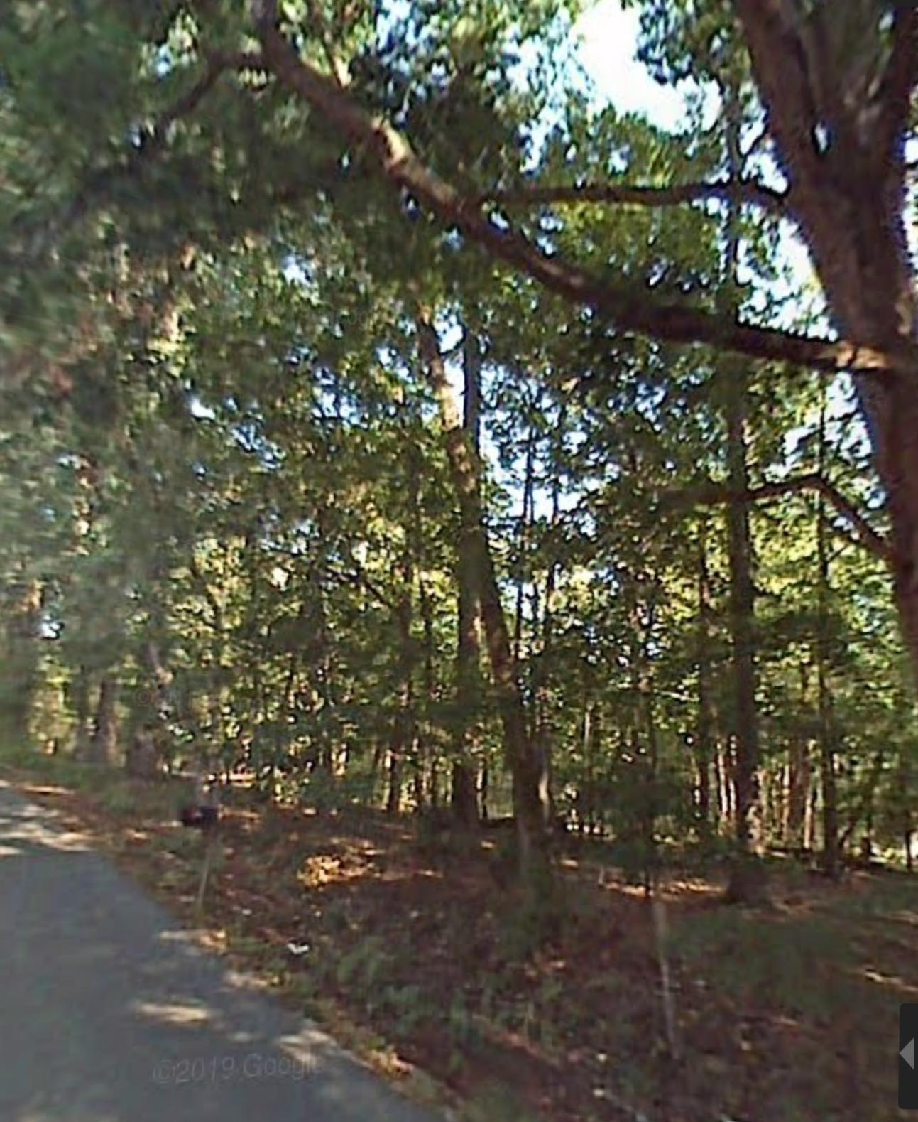 9700 Smoky Row Rd, Strawberry Plains, Tennessee 37871, ,Lots & Acreage,For Sale,Smoky Row,1099314