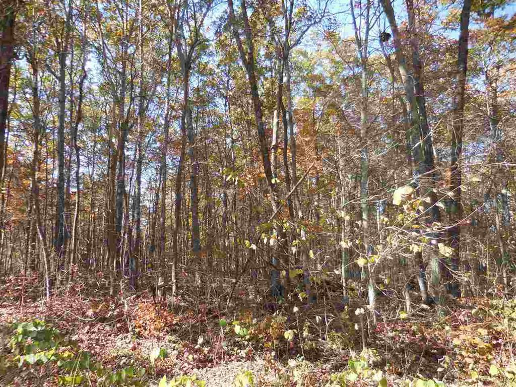 4119 Chica Rd, Crossville, Tennessee 38572, ,Lots & Acreage,For Sale,Chica,1100092