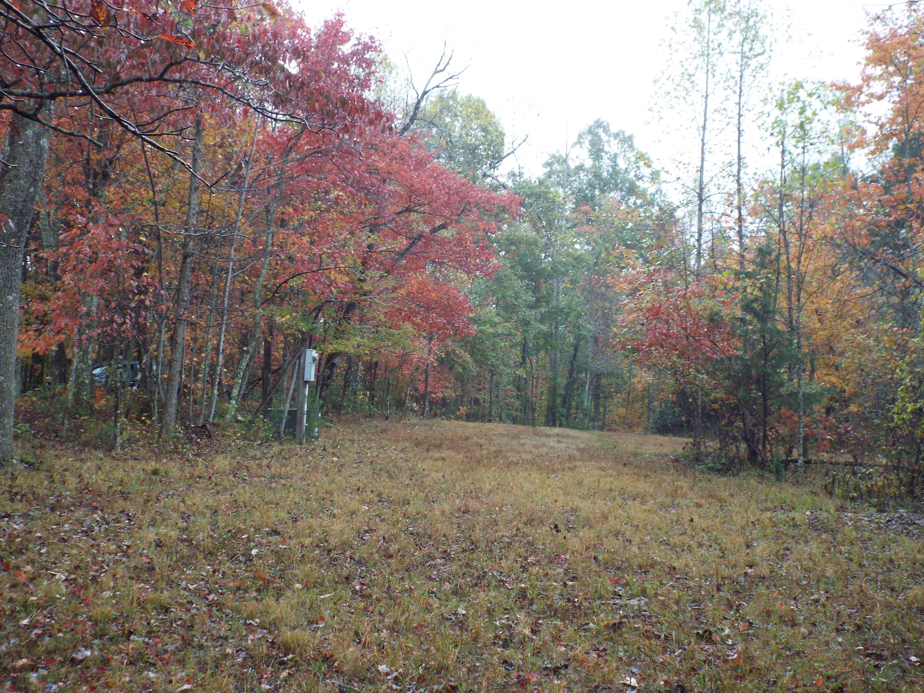 625 Meadows, Sparta, Tennessee, United States 38583, ,Lots & Acreage,For Sale,Meadows,1100152
