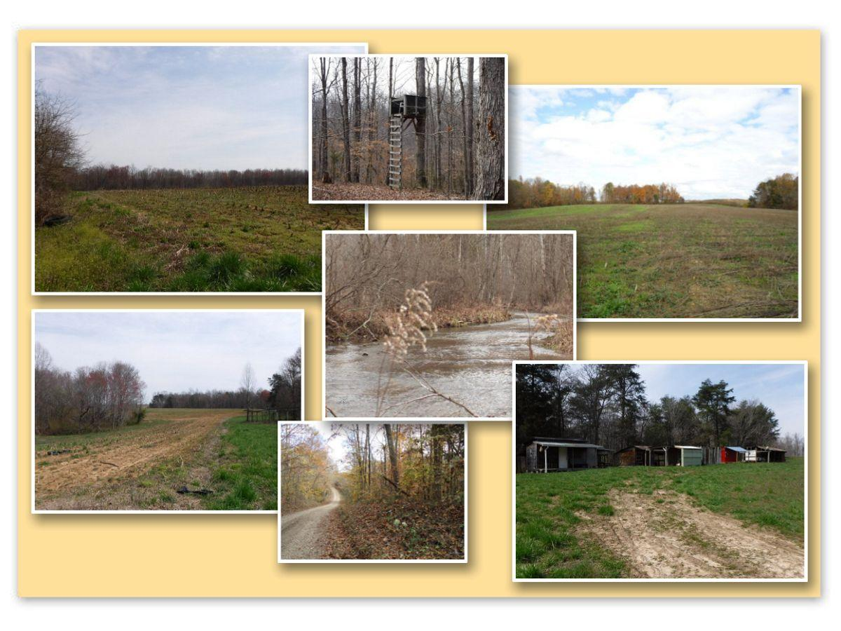 627 Birdwell Rd, Whitleyville, Tennessee, United States 38588, ,Lots & Acreage,For Sale,Birdwell Rd,1100629