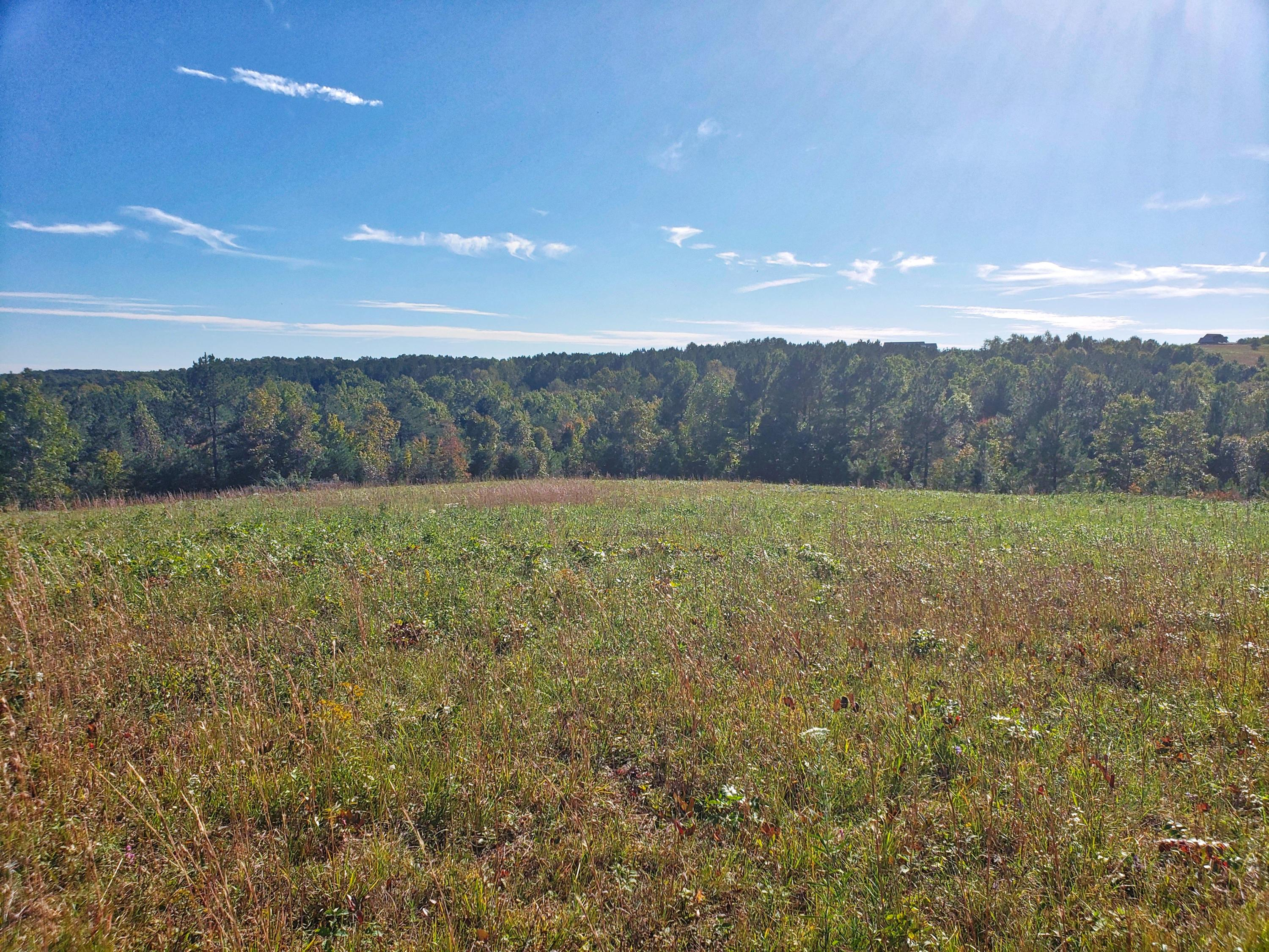 Lot 15 Nichol Creek, Jamestown, Tennessee, United States 38556, ,Lots & Acreage,For Sale,Nichol Creek,1100689