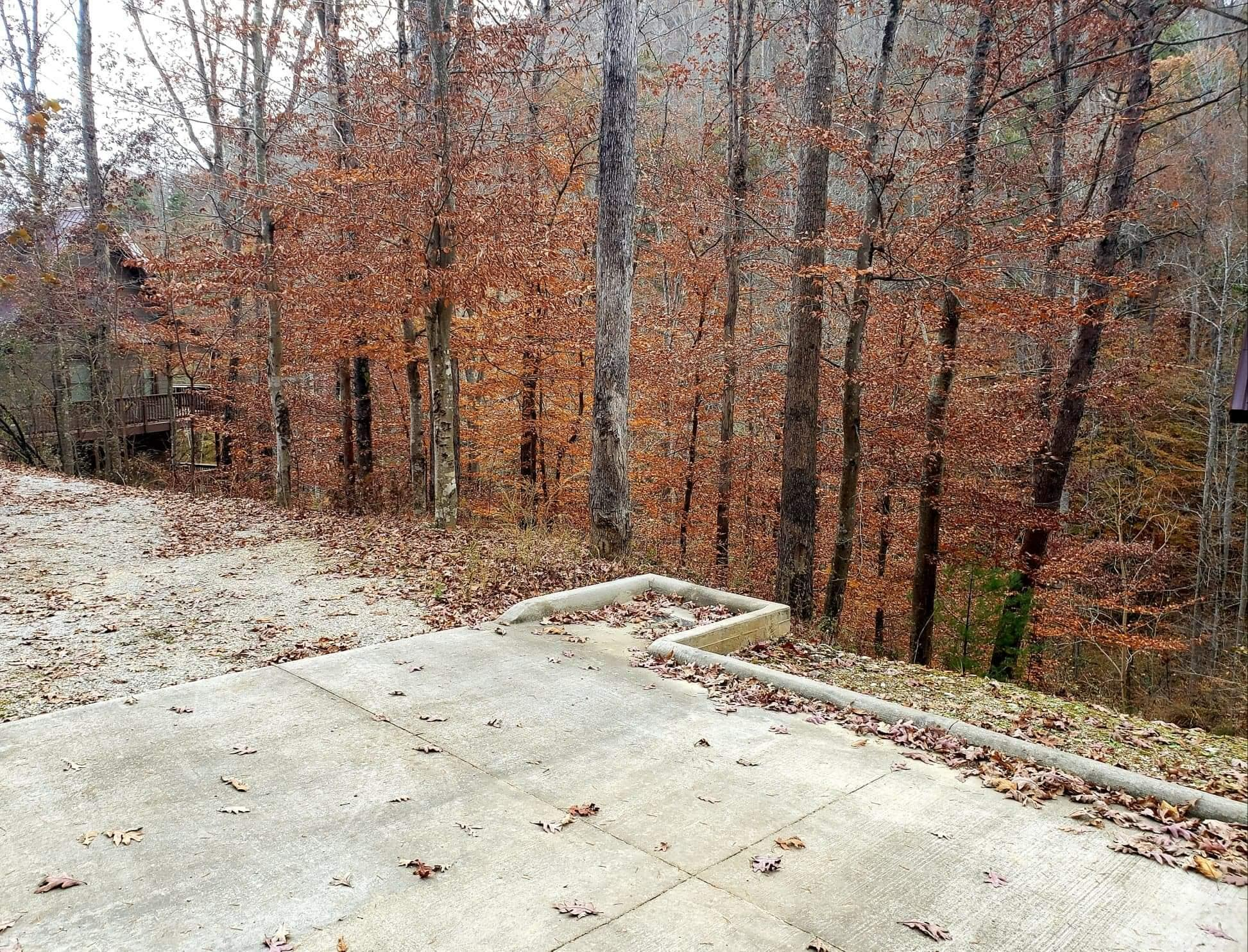 Lot 13 Poplar Creek Court, Caryville, Tennessee 37714, ,Lots & Acreage,For Sale,Poplar Creek,1101235