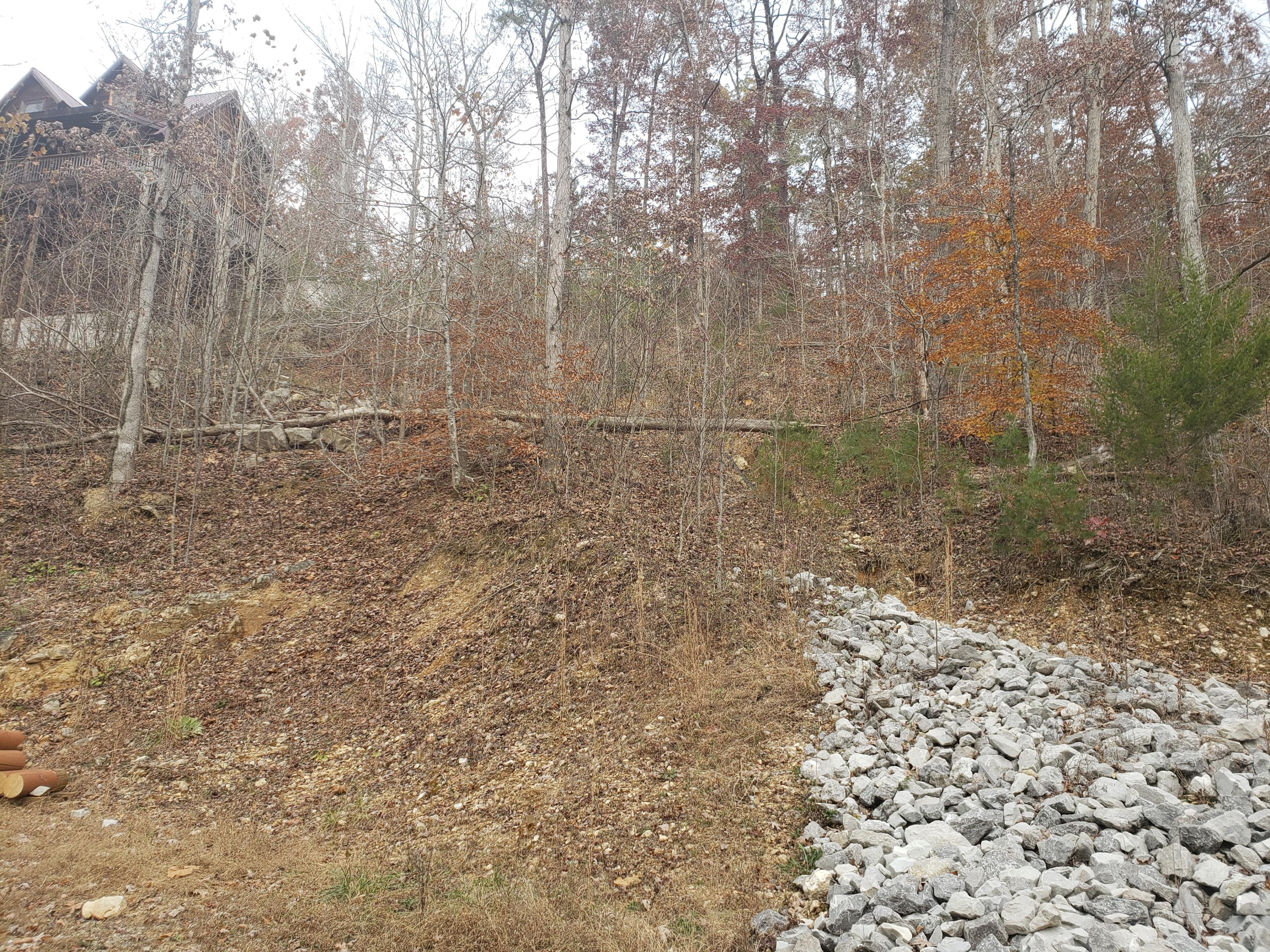 Lot 10 Poplar Creek Court, Caryville, Tennessee 37714, ,Lots & Acreage,For Sale,Poplar Creek,1101234