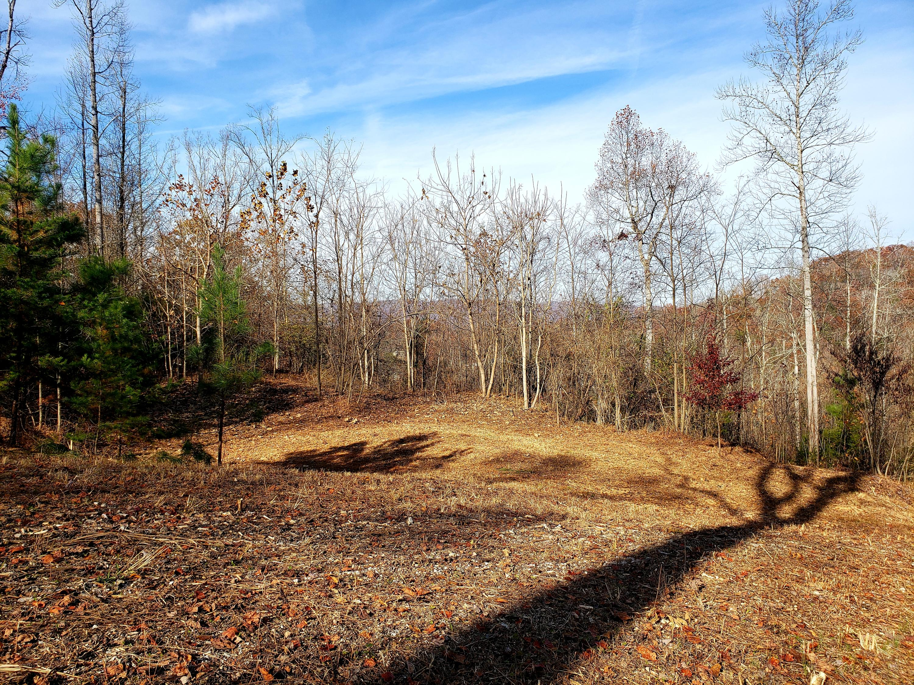 Lot 18 Lakemont Lane: