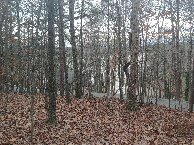 1103 Wilderness, Friendsville, Tennessee, United States 37737, ,Lots & Acreage,For Sale,Wilderness,1107871
