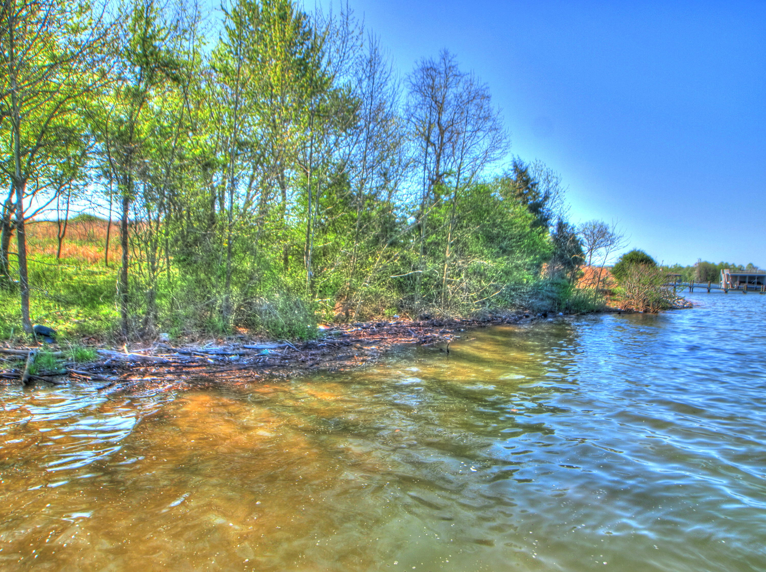 Lot 428 Pointe Vista, Rockwood, Tennessee, United States 37854, ,Lots & Acreage,For Sale,Pointe Vista,1112516