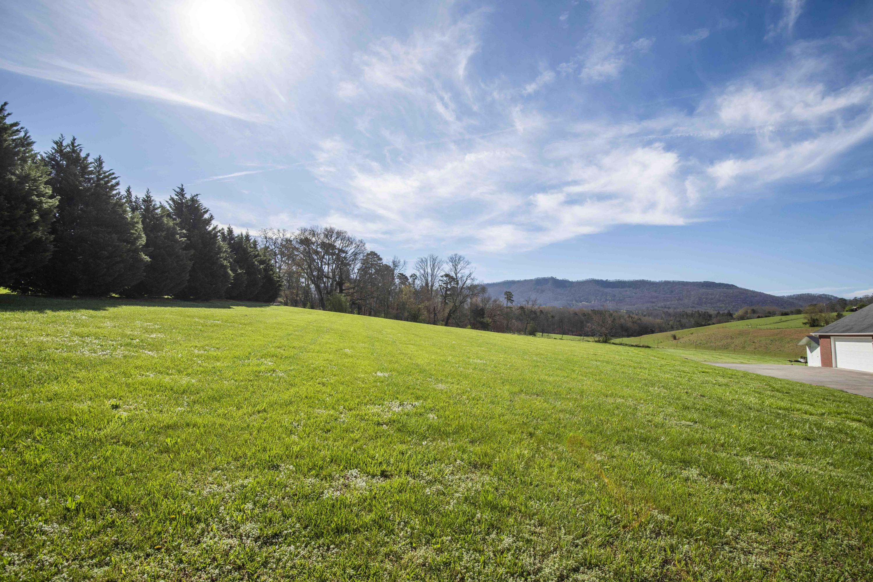 Green Pasture Lane, Sevierville, Tennessee, United States 37876, ,Lots & Acreage,For Sale,Green Pasture Lane,1112525