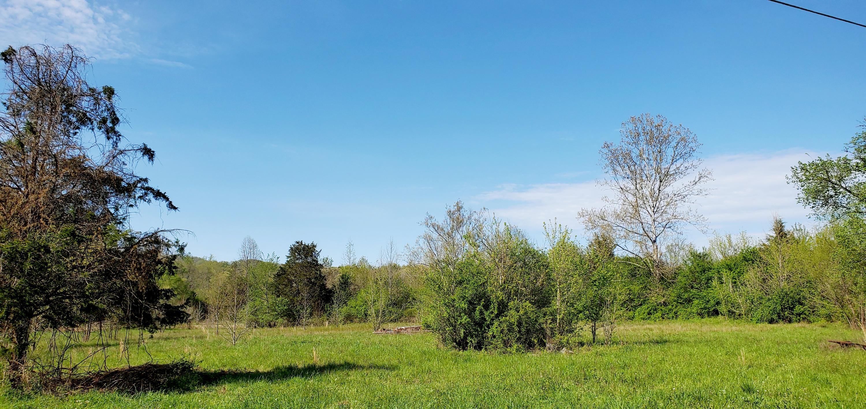 907 Pine Ridge, Clinton, Tennessee, United States 37716, ,Lots & Acreage,For Sale,Pine Ridge,1111869