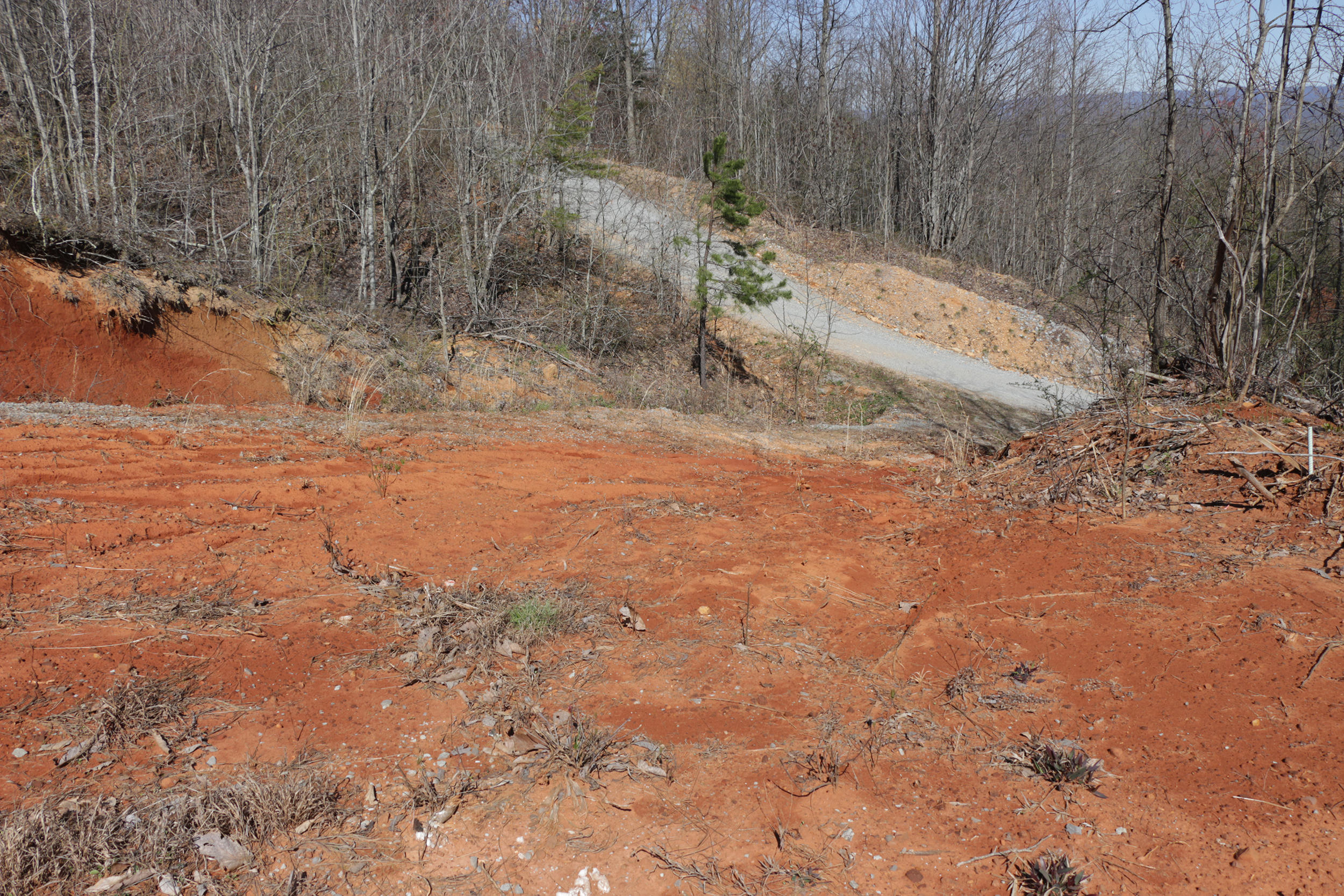Lot 421 Chimney Rock: