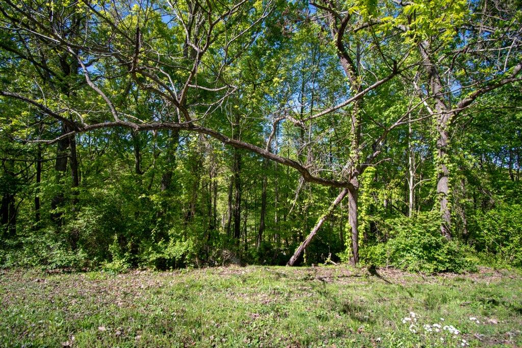 7321 Harvey Henry Rd, Corryton, Tennessee 37721, ,Lots & Acreage,For Sale,Harvey Henry,1115341