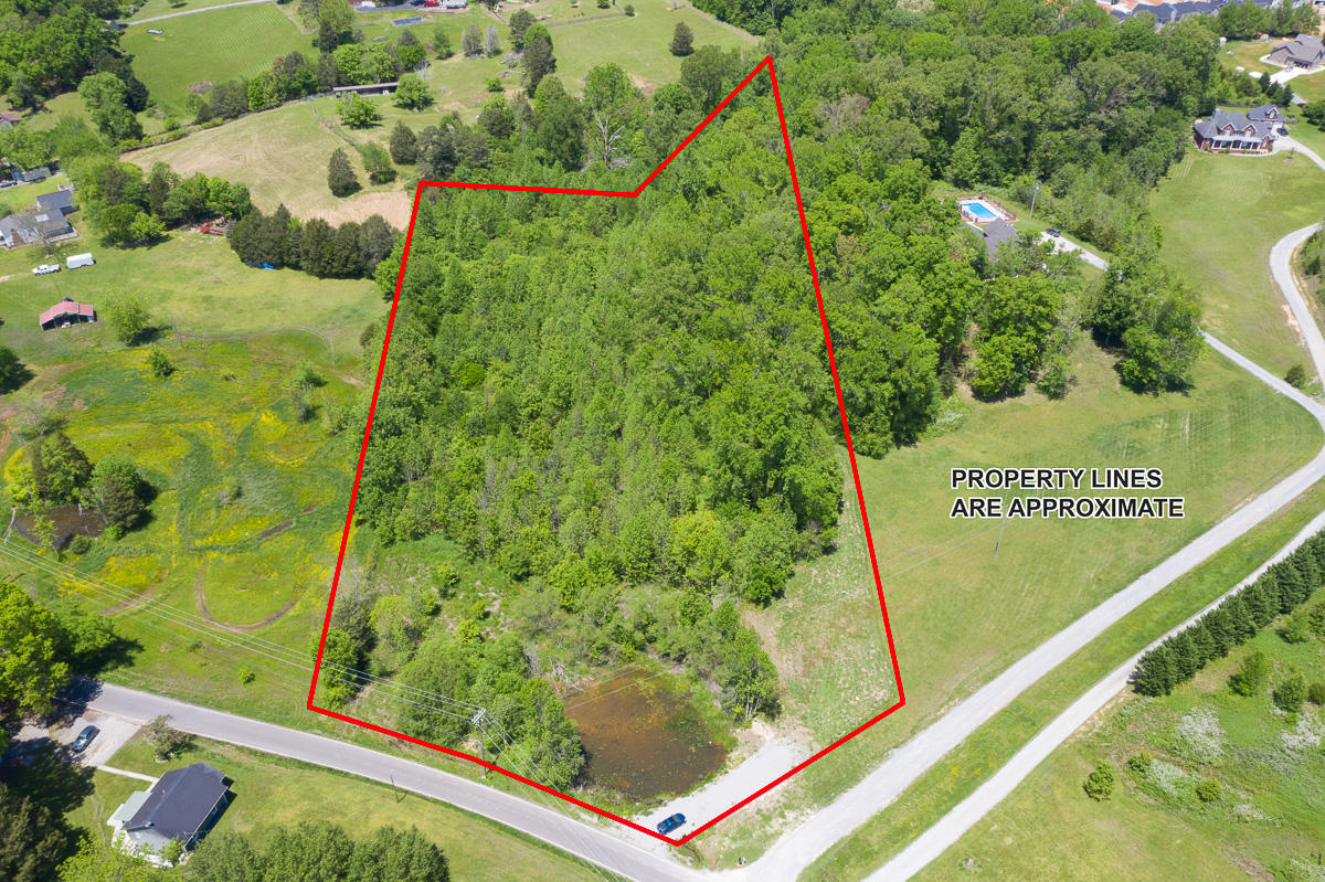 905 Copeland, Powell, Tennessee, United States 37849, ,Lots & Acreage,For Sale,Copeland,1116320
