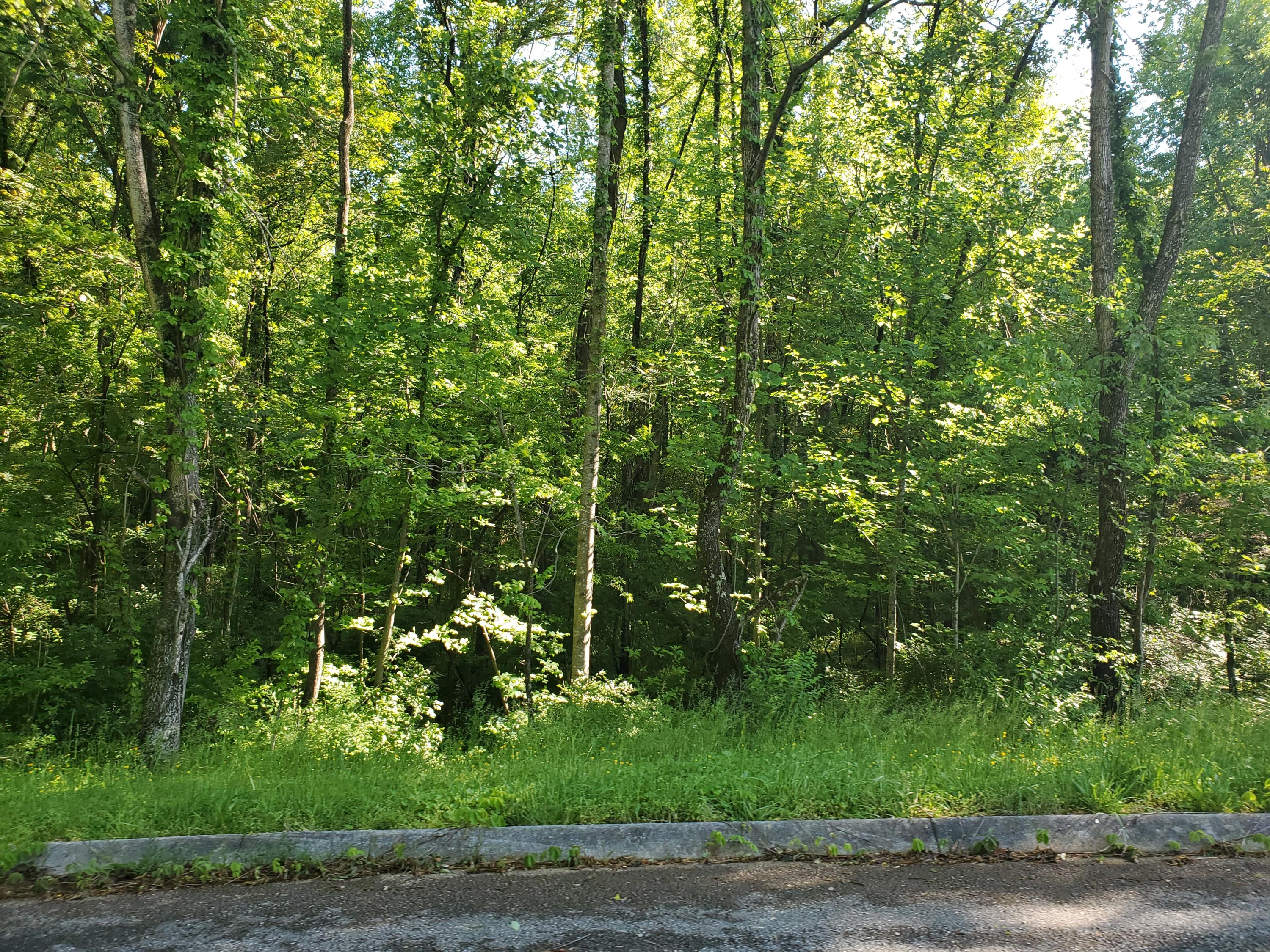 8070 West Pointe Drive, Talbott, Tennessee 37877, ,Lots & Acreage,For Sale,West Pointe,1116737