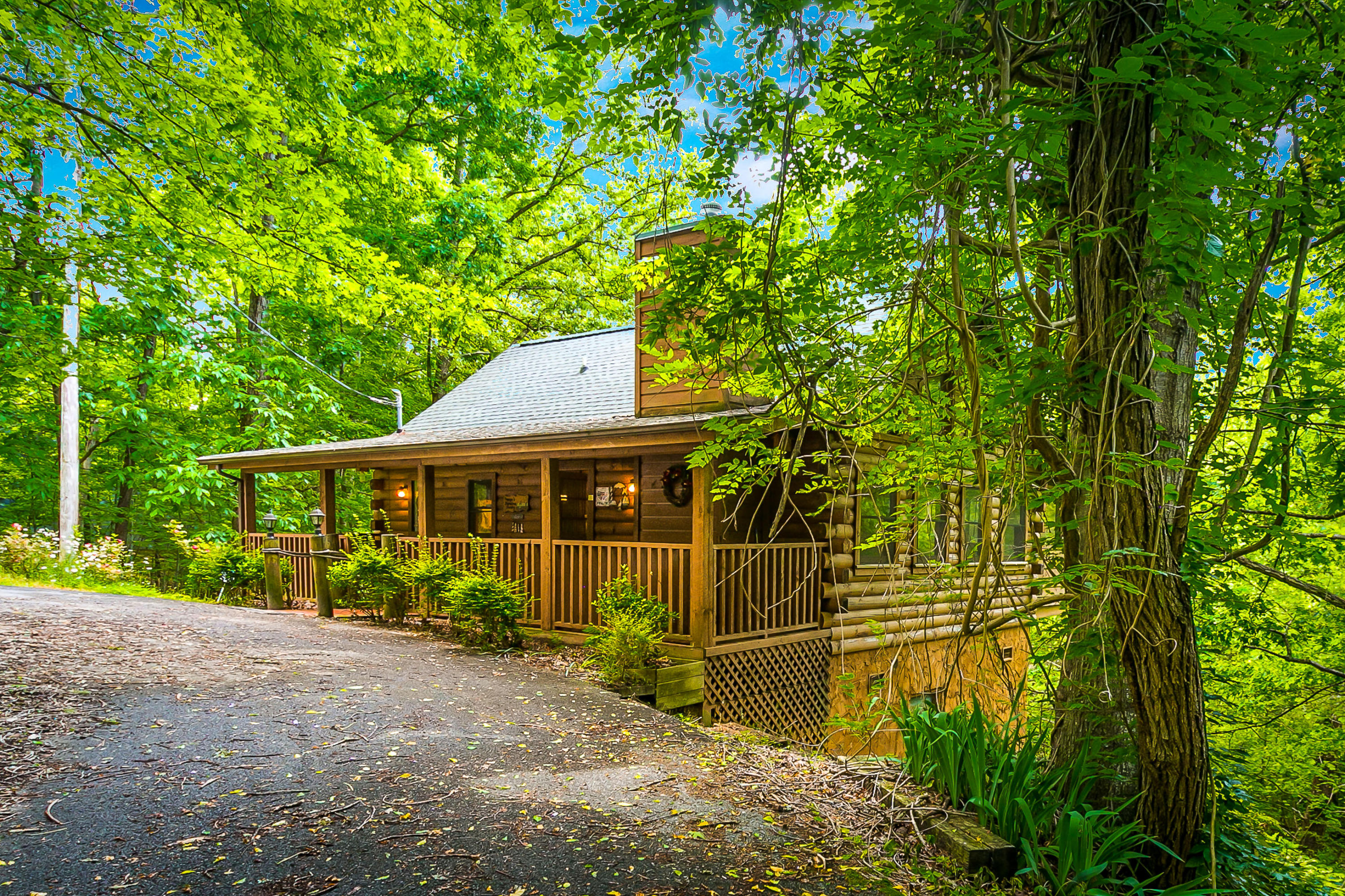 1645 Mountain View Rd, Sevierville, Tennessee 37876, 1 Bedroom Bedrooms, ,1 BathroomBathrooms,Single Family,For Sale,Mountain View,1118459