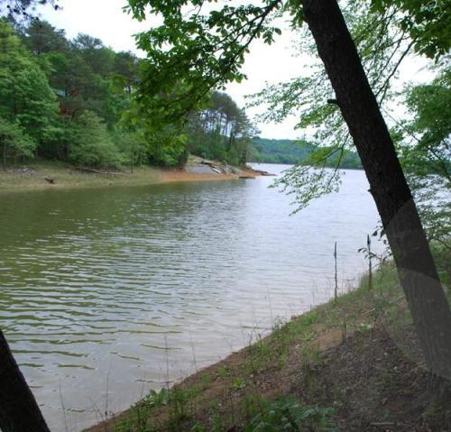 1527 Catoosa Drive, Mooresburg, Tennessee 37811, ,Lots & Acreage,For Sale,Catoosa,1118497