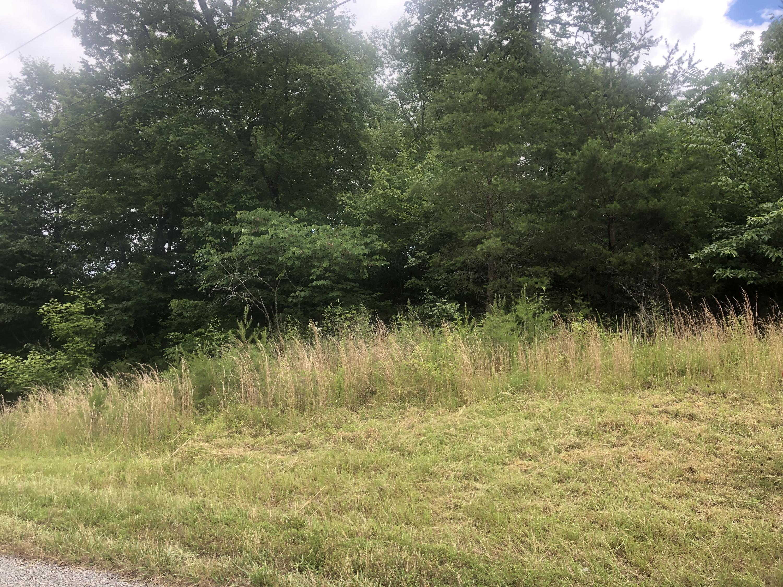 309 Bluff View Rd: