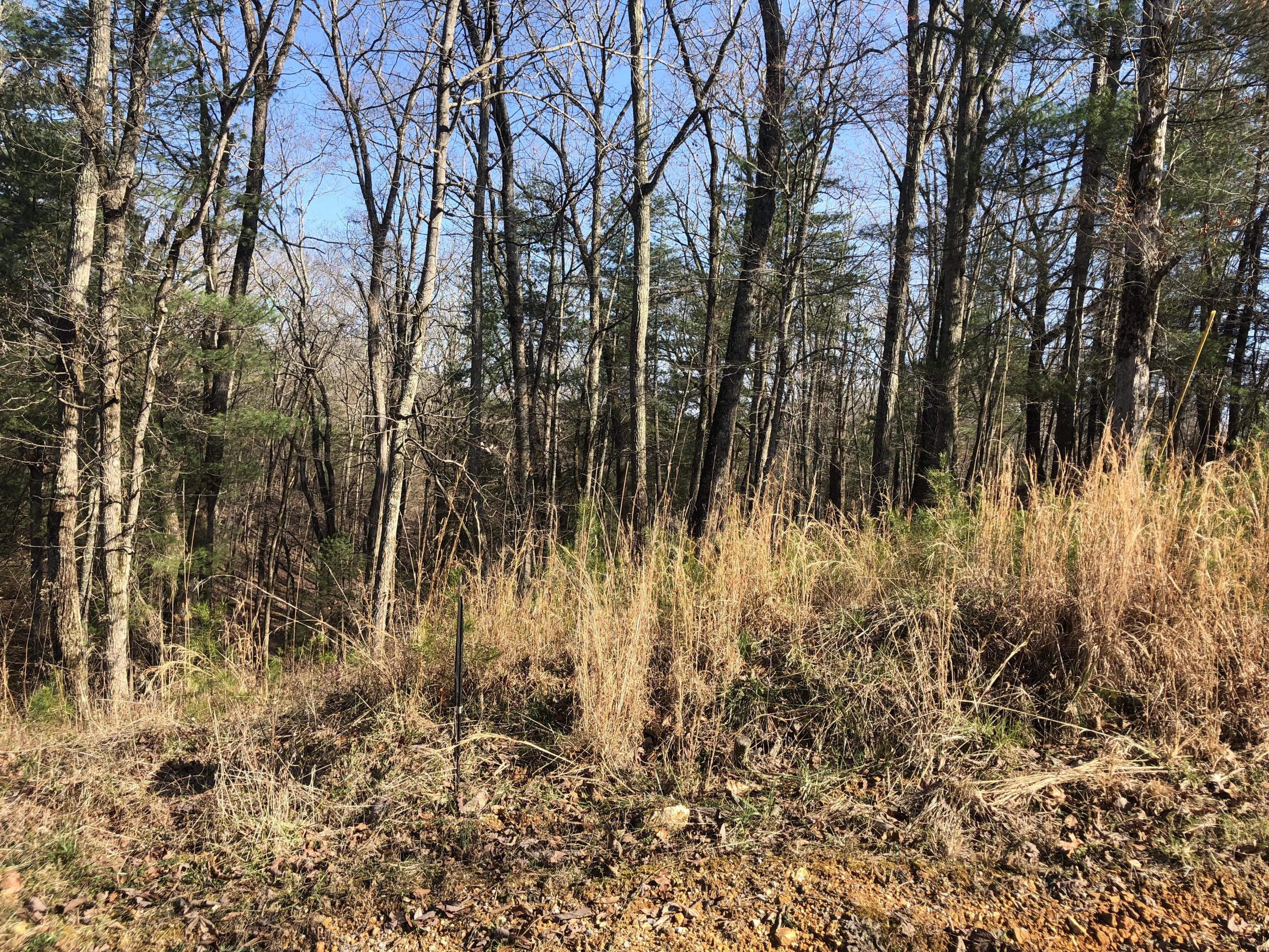 Lot 286 Maple, Spring City, Tennessee, United States 37381, ,Lots & Acreage,For Sale,Maple,1122173
