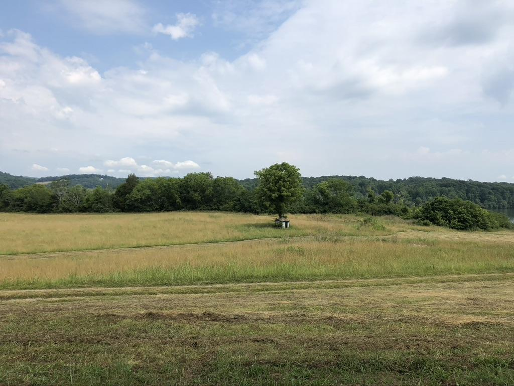 1225 Matlock Bend (Lot 3), Loudon, Tennessee, United States 37774, ,Lots & Acreage,For Sale,Matlock Bend (Lot 3),1120858