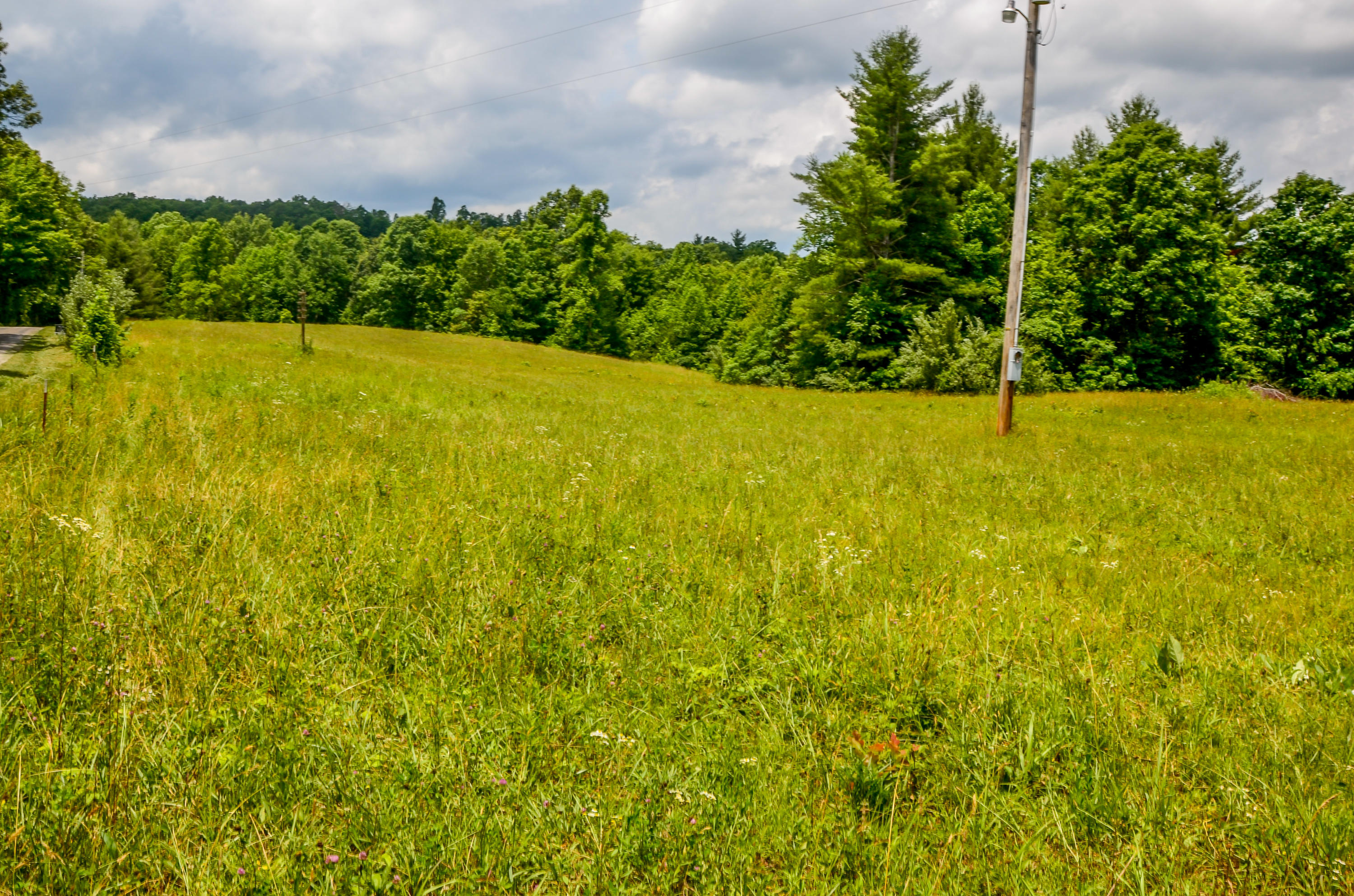 351 Zac, Sunbright, Tennessee, United States 37872, ,Lots & Acreage,For Sale,Zac,1121324