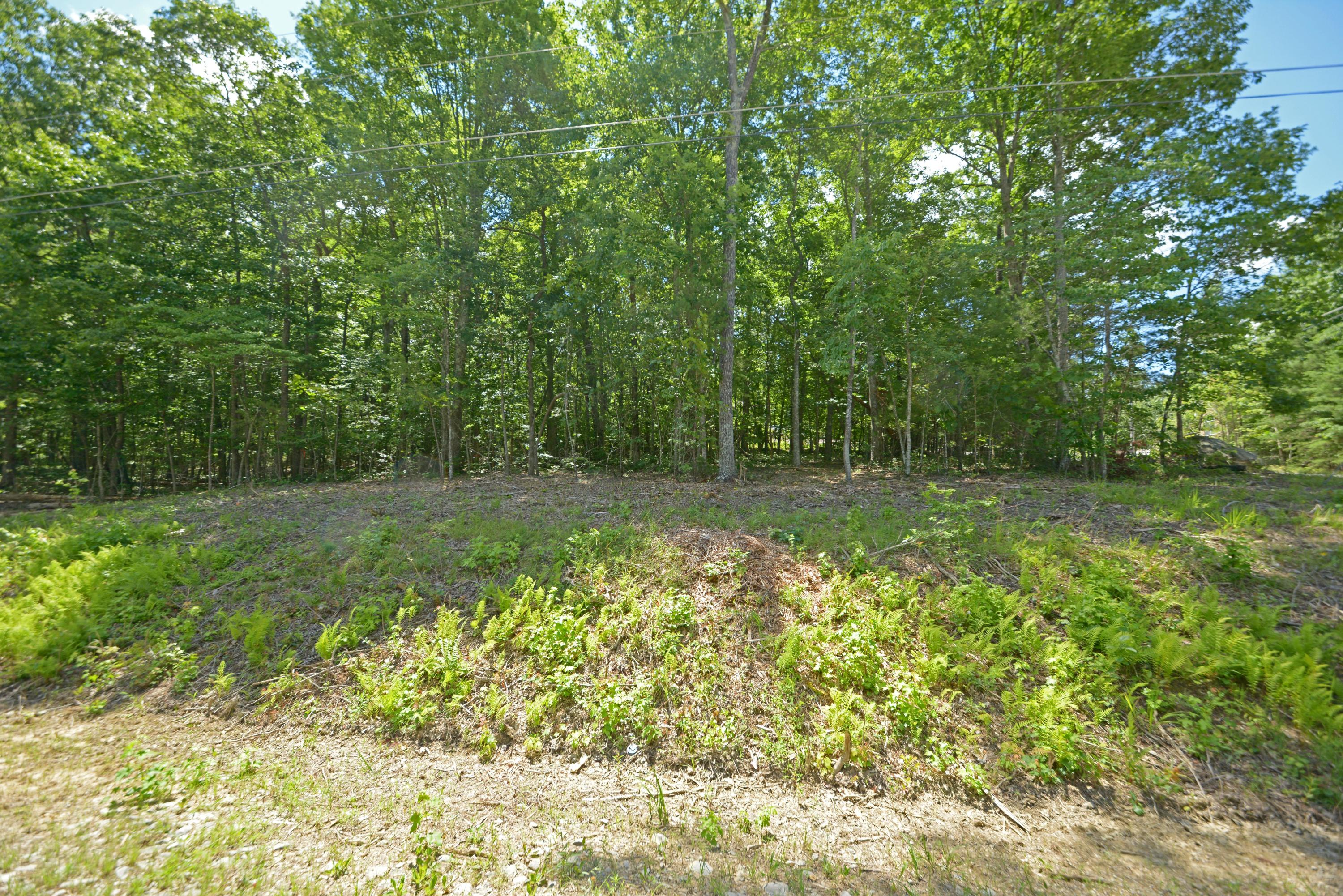 10 Forman, Fairfield Glade, Tennessee, United States 38558, ,Lots & Acreage,For Sale,Forman,1122263