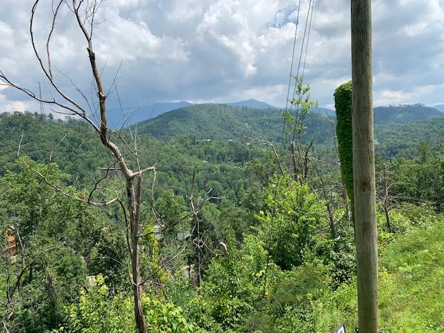 Pinnacle Dr, Gatlinburg, Tennessee, United States 37738, ,Lots & Acreage,For Sale,Pinnacle Dr,1122179