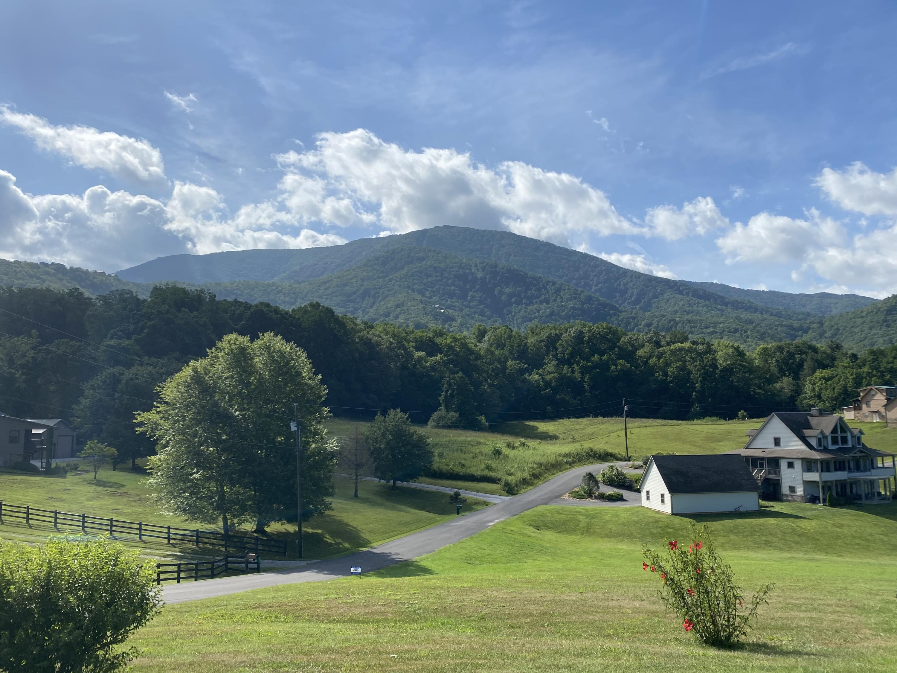 Sugar Tree Drive, Sevierville, Tennessee 37862, ,Lots & Acreage,For Sale,Sugar Tree,1125226