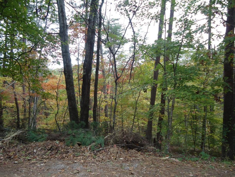 Parcel 129 Nebo Mountain Rd, Walland, Tennessee 37886, ,Lots & Acreage,For Sale,Nebo Mountain,1125240