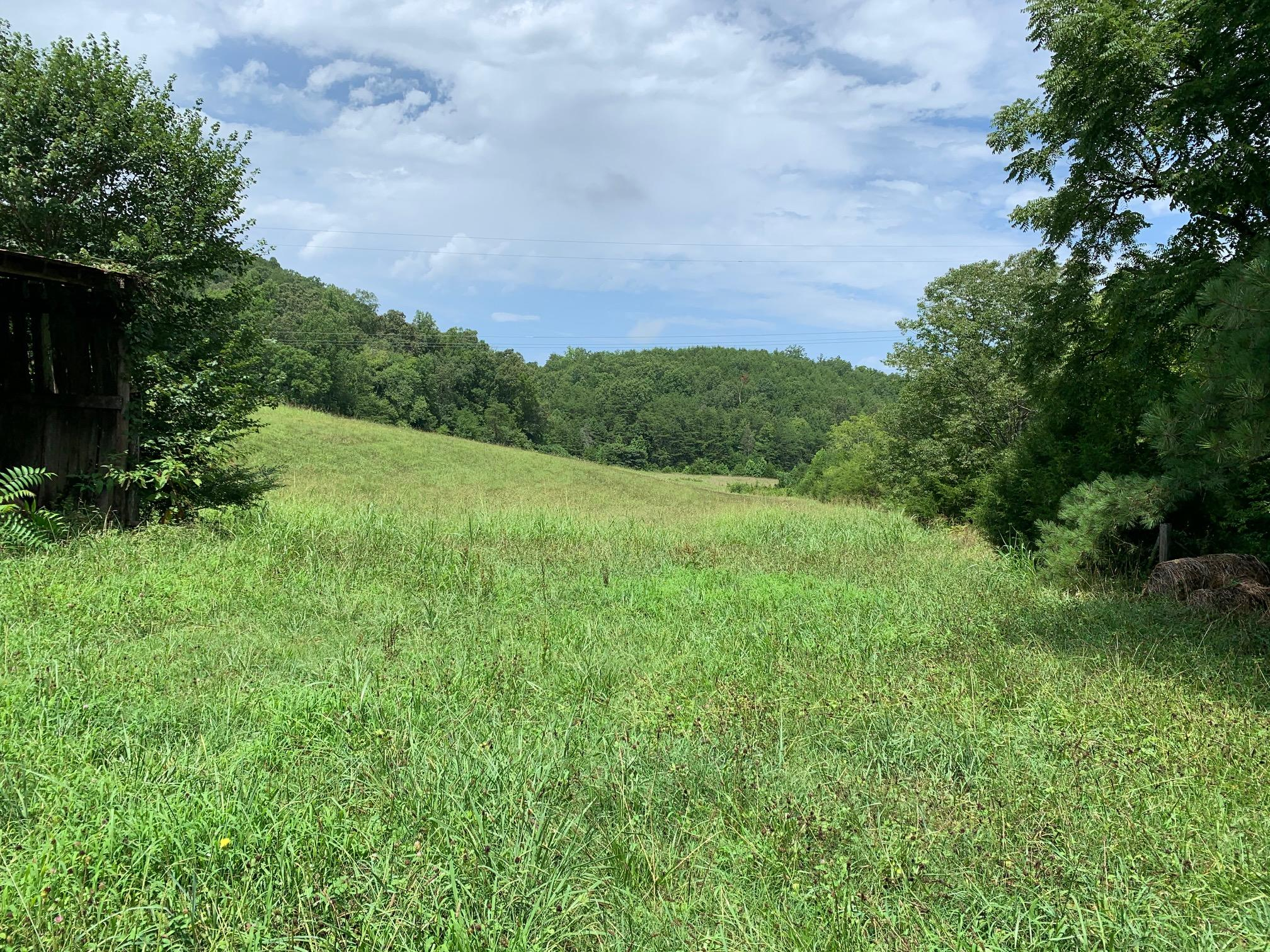 Ballplay School, Tellico Plains, Tennessee, United States 37385, ,Lots & Acreage,For Sale,Ballplay School,1125217
