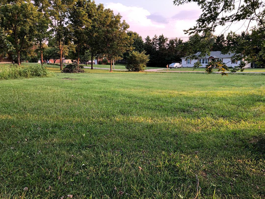 King, Seymour, Tennessee, United States 37865, ,Lots & Acreage,For Sale,King,1126020