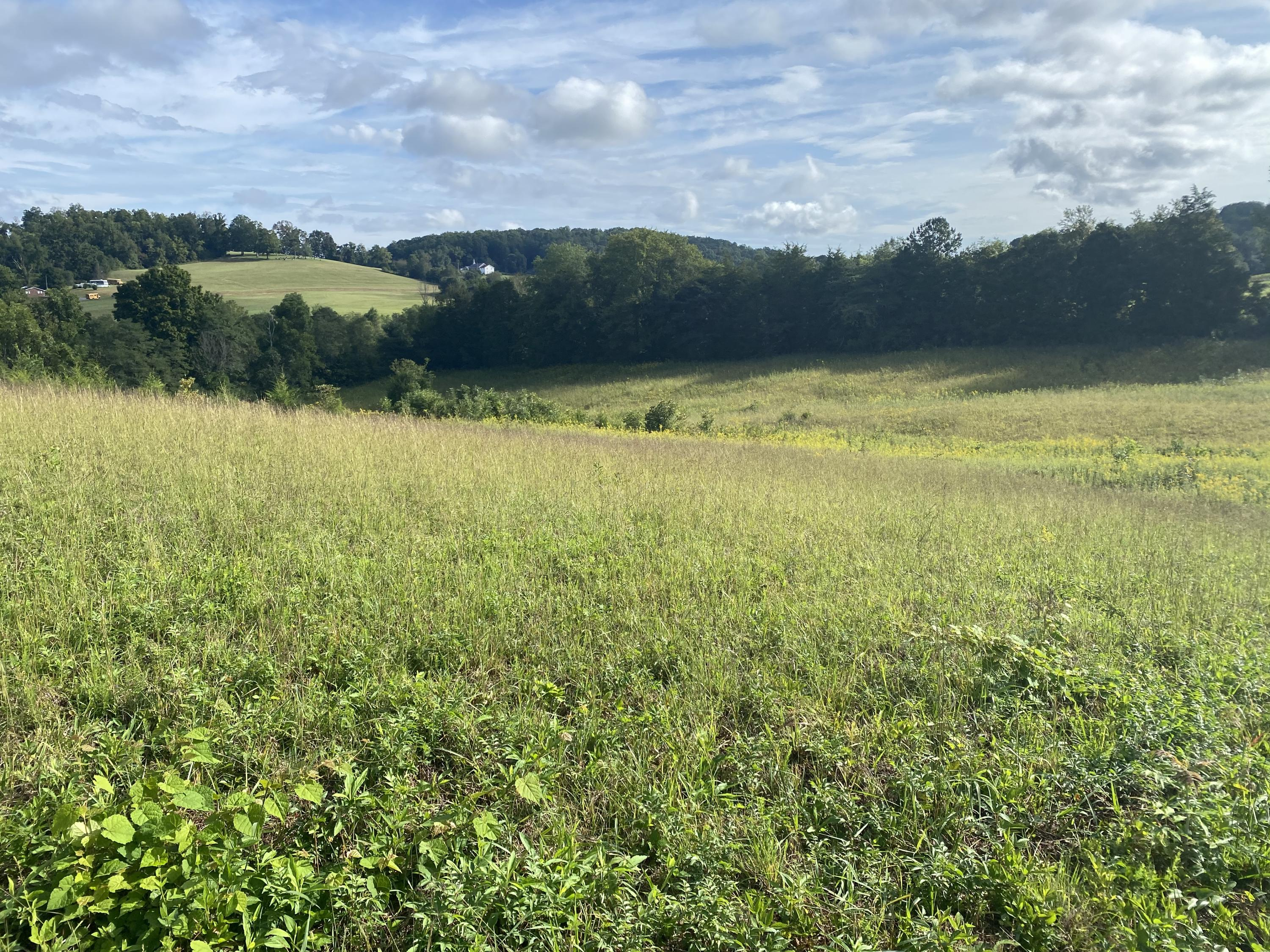 Valley, Maynardville, Tennessee, United States 37807, ,Lots & Acreage,For Sale,Valley,1129676