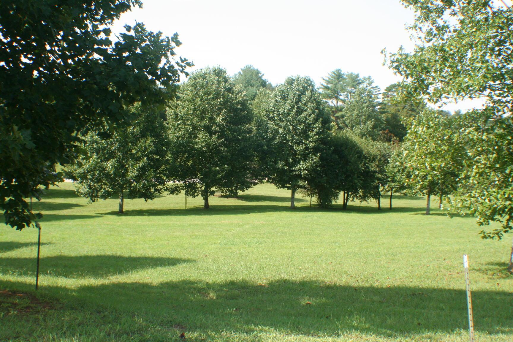 2441 Robin Ridge, Maryville, Tennessee, United States 37801, ,Lots & Acreage,For Sale,Robin Ridge,1129738