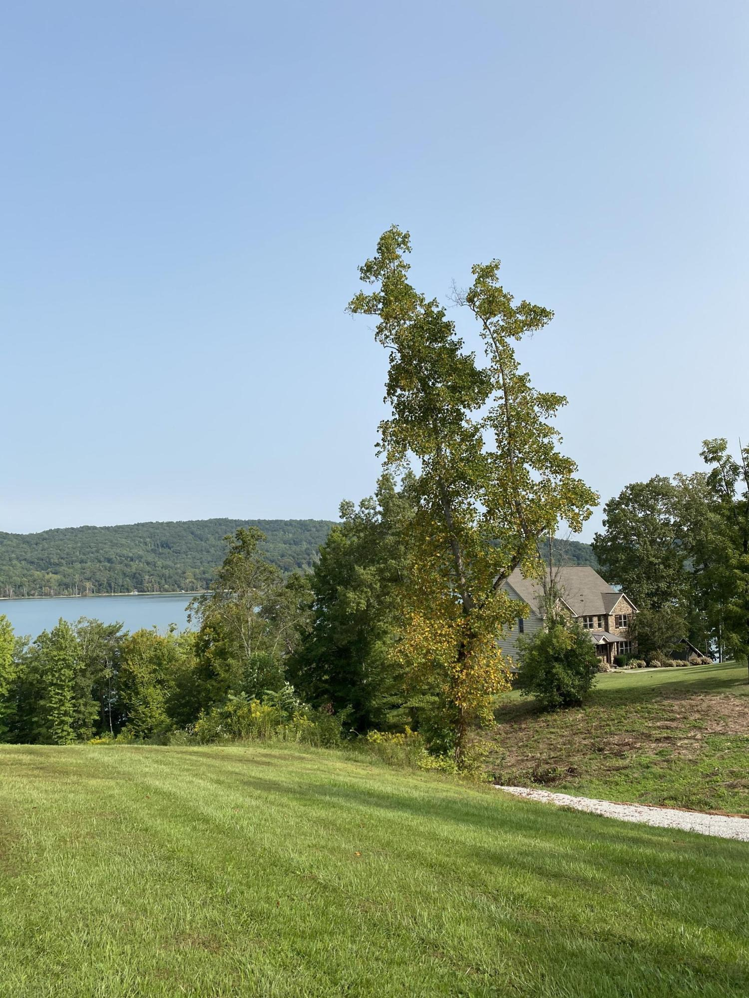 Lot 99 Hickory Point Lane: