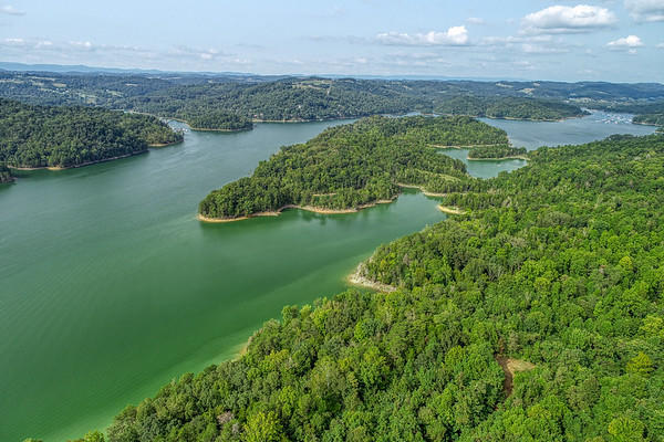 Swan Seymour/cool Branch Rd, Maynardville, Tennessee, United States 37807, ,Lots & Acreage,For Sale,Swan Seymour/cool Branch Rd,1130140