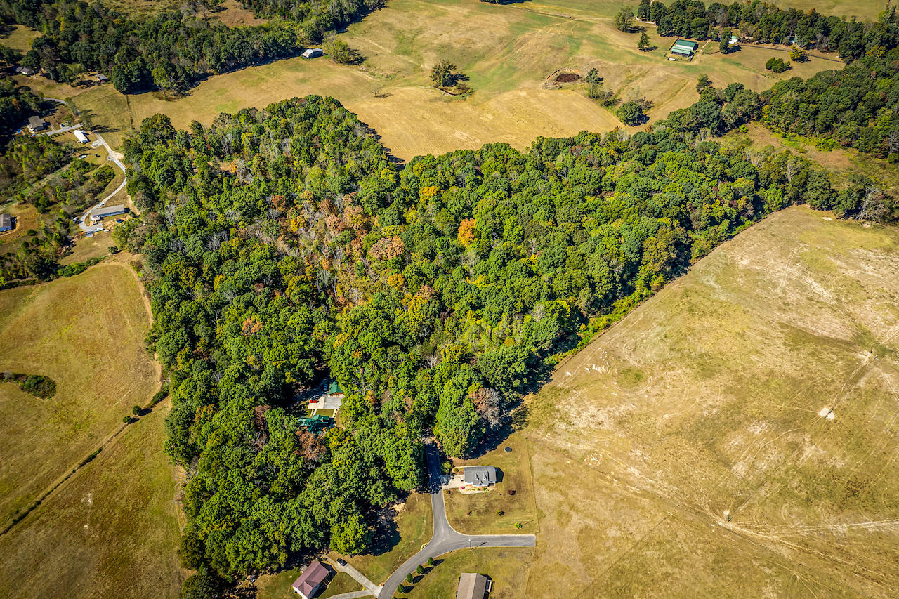 Ely, Bulls Gap, Tennessee, United States 37711, ,Lots & Acreage,For Sale,Ely,1130337