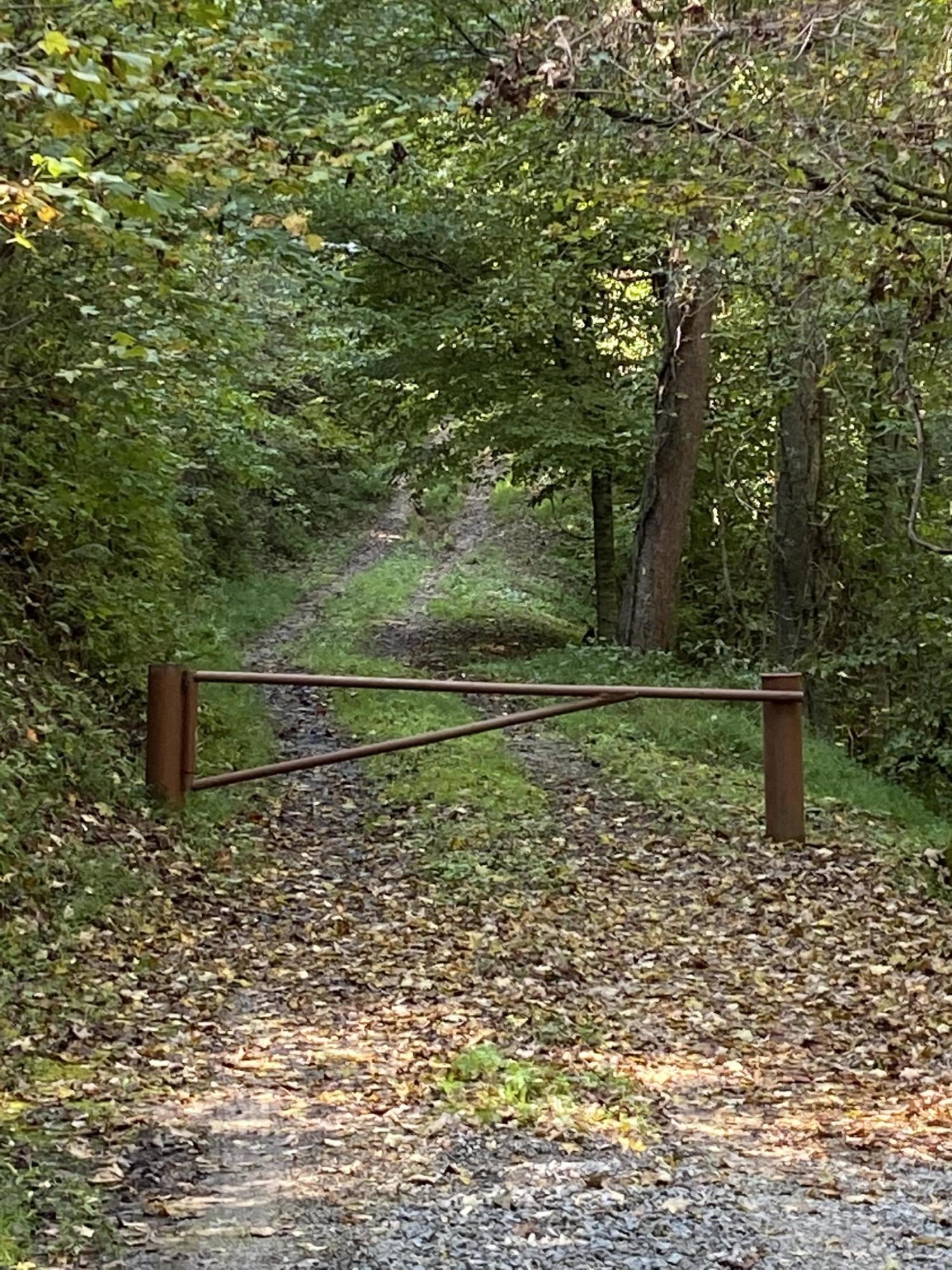 196 Mariel Lane Lane: