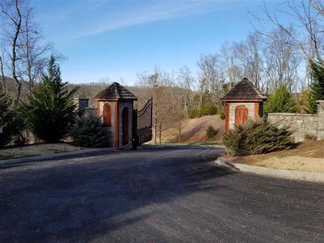 Stone Bridge, Dandridge, Tennessee, United States 37725, ,Lots & Acreage,For Sale,Stone Bridge,1131182