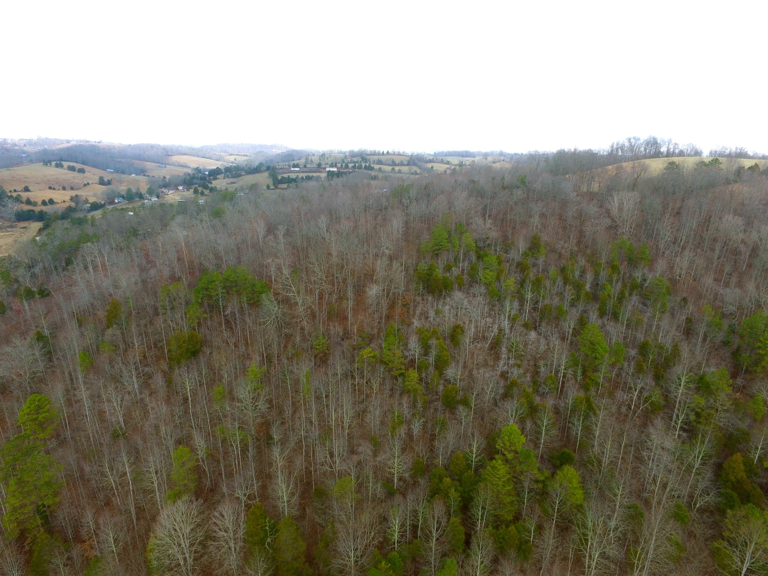 1010 Mountain, New Tazewell, Tennessee, United States 37825, ,Lots & Acreage,For Sale,Mountain,1131212