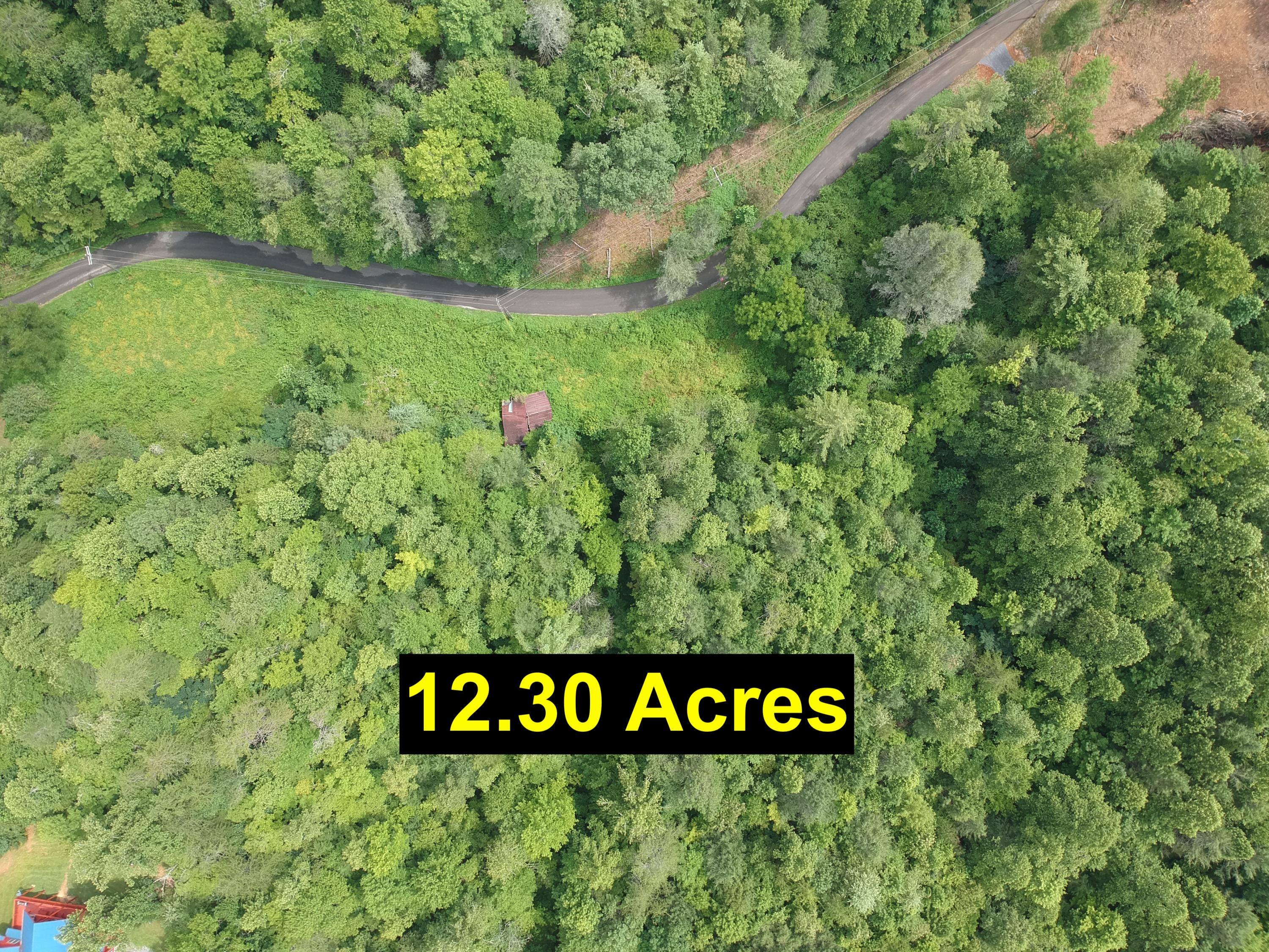 Grassy Branch Loop, Sevierville, Tennessee 37876, ,Lots & Acreage,For Sale,Grassy Branch,1133213
