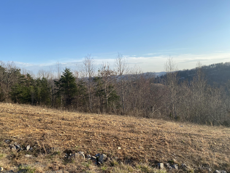 Panoramic Drive: