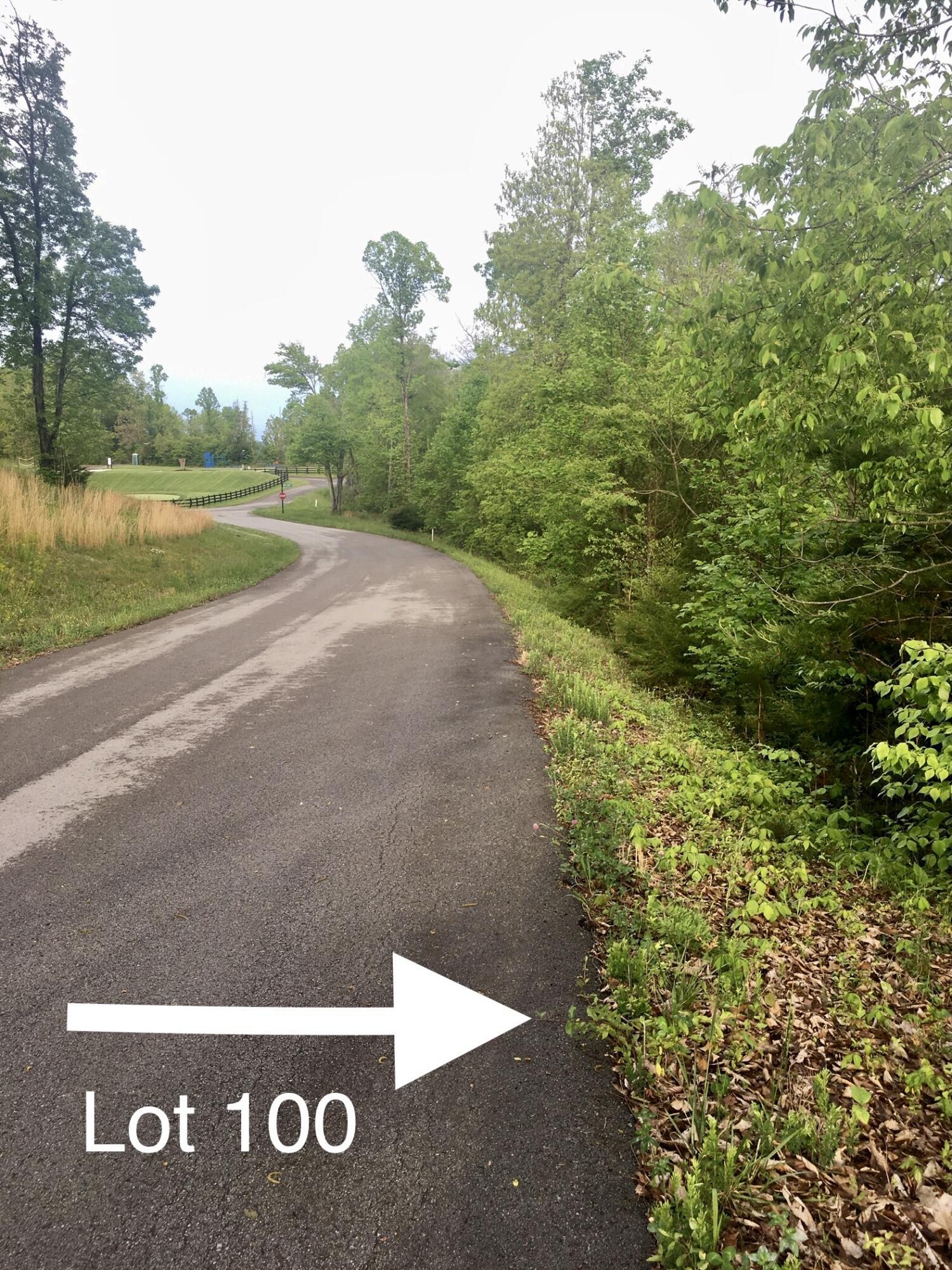 Lot 100 Flagstone Loop: