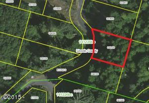 900 BLK Elk Mountain Road Lot 33, Yachats, OR 97498 - Aerial mapped view