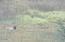 47330 Beach Crest Drive, Neskowin, OR 97149 - DSCF0504