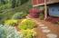 460 NE Whale Watch Court, Depoe Bay, OR 97341 - Easy care landscaping