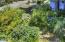 1825 NW Cedar Crest Pl, Waldport, OR 97394 - 05-IMG_8540_1_2-19
