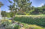 5965 SW Arbor Dr, South Beach, OR 97366 - Private Back Yd