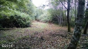 4900 NE Highland Ave, Yachats, OR 97498 - Partially developed lot