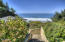 7625 NW Logan Rd, Lincoln City, OR 97367 - Pathway to Artist Studio/Greenhouse